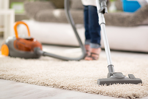 Vacuum Cleaner for High Pile Carpet