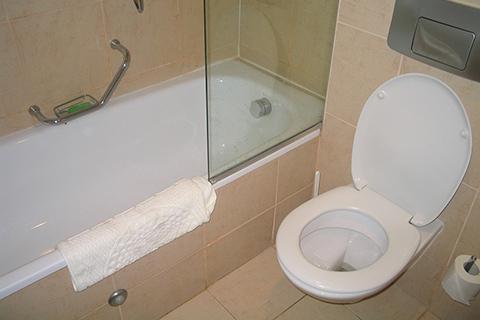 Best Home Toilet