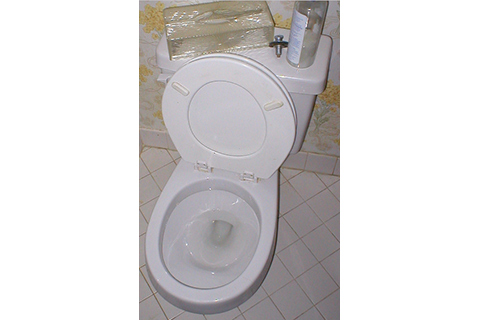 some american standard models for example have a pressurized rim that essentially powerwashes your toilet each and