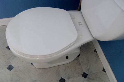 Ultramax Toilet