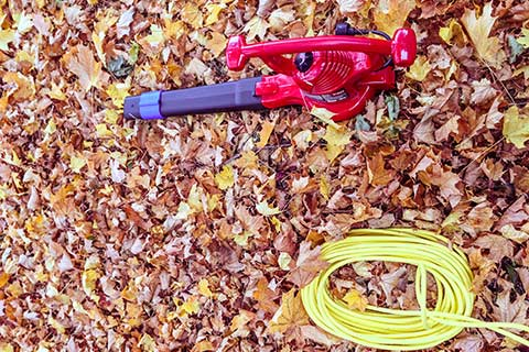 Vacuum For Leaves