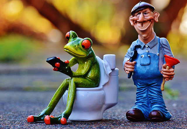 Cartoon image of a plumber and a frog
